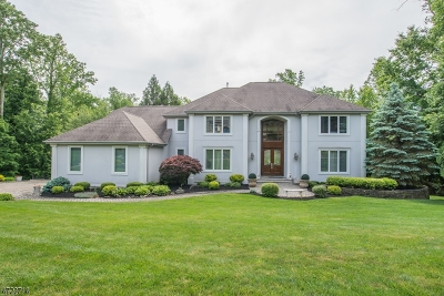 Montville Twp. Single Family Home For Sale: 19 Crest Ter