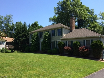 Parsippany-Troy Hills Twp. Single Family Home For Sale: 3 Castaby Way
