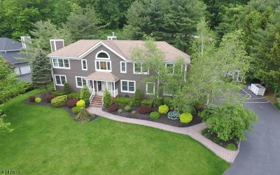 Randolph Twp. Single Family Home For Sale: 18 Mount Freedom