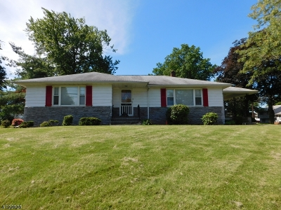 Bridgewater Twp. Single Family Home For Sale: 522 E Main St