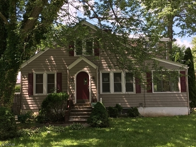 Parsippany Single Family Home For Sale: 30 Jacksonville Dr