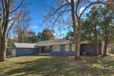 Bedminster Twp. Single Family Home For Sale: 310 Old Dutch Rd