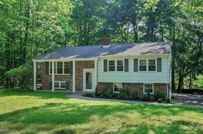 Warren Twp. Single Family Home For Sale: 2 Sleepy Hollow Ln