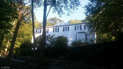 Randolph Twp. Single Family Home For Sale: 41 Springhill Rd