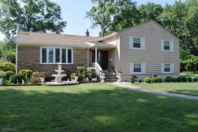 Springfield Twp. Single Family Home For Sale: 22 Berkeley Rd
