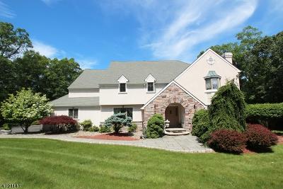 Bridgewater Twp. Single Family Home For Sale: 608 Emerald Trl