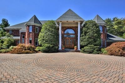 Single Family Home For Sale: 31 Schaffer Rd