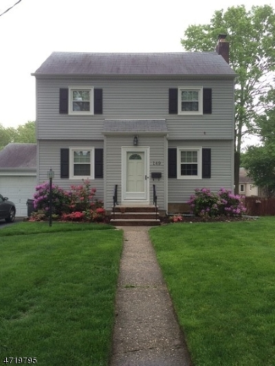 Springfield Twp. Single Family Home For Sale: 149 Meisel Ave