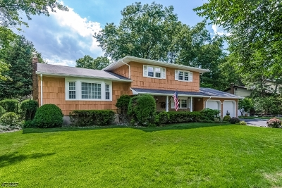 Piscataway Twp. Single Family Home For Sale: 18 Thames Rd
