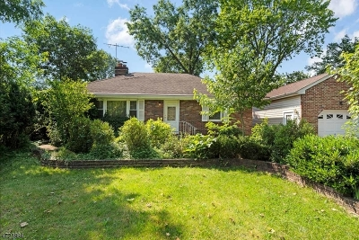 Piscataway Twp. Single Family Home For Sale: 223 Grandview Ave