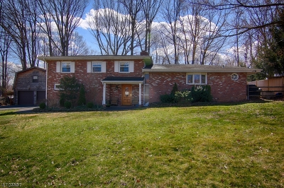 Bernardsville Boro Single Family Home For Sale: 15 Tysley St