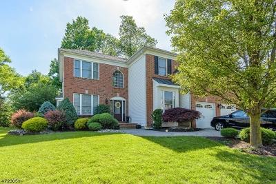 Plainfield City Single Family Home For Sale: 42 Blue Ridge Cir