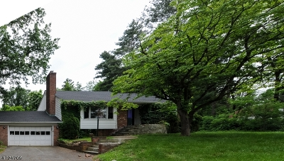 Morris Twp. Single Family Home For Sale: 5 Whippany Rd