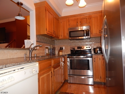 Bedminster Twp. Condo/Townhouse For Sale: 28 Encampment Dr