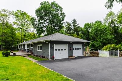Bernards Twp. Single Family Home For Sale: 69 Morristown Rd