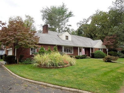 Rahway City Single Family Home For Sale: 890 Crescent Dr