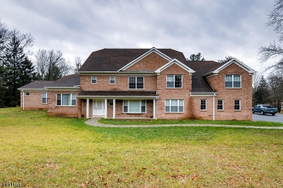 Bridgewater Twp. Single Family Home For Sale: 1390 Mallard Dr