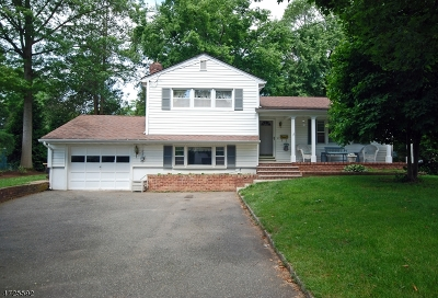Florham Park Boro Single Family Home For Sale: 13 Leslie Ave