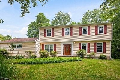 Warren Twp. Single Family Home For Sale: 63 Old Smalleytown Rd