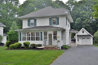 Boonton Town Single Family Home For Sale: 137 Overlook Ave