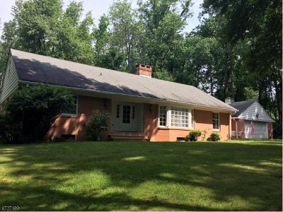 Morris Twp. Single Family Home For Sale: 479 Western Ave