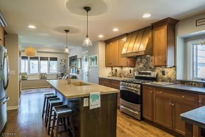 Scotch Plains Twp. Single Family Home For Sale: 2265 Woodland Ter