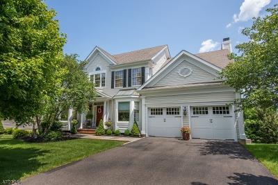Bernardsville Boro Single Family Home For Sale: 7 Stirling Rd