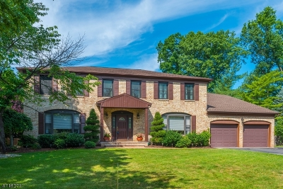 Parsippany Single Family Home For Sale: 47 Stephen Ter