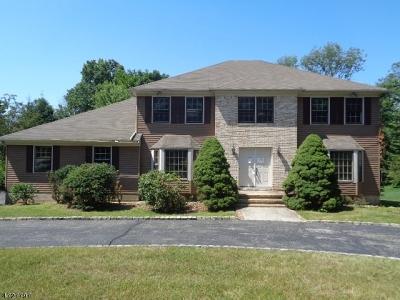 Morris Twp. Single Family Home For Sale: 32 Harter Rd