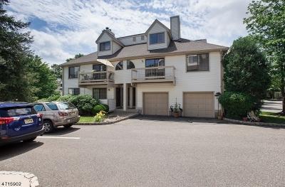 Bernards Twp. Condo/Townhouse For Sale: 2303 Privet Way #2303