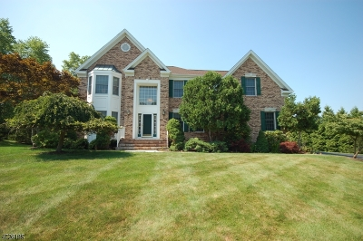 Bridgewater Twp. Single Family Home For Sale: 5 McNab Ct