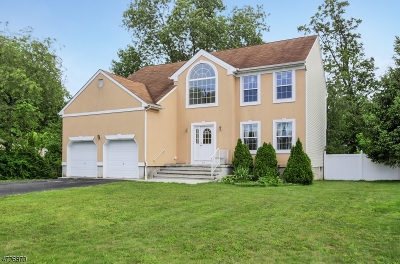 Woodbridge Twp. Single Family Home For Sale: 24 Summit Ave