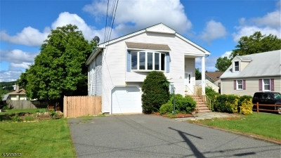 Boonton Town Single Family Home For Sale: 436 Pine St