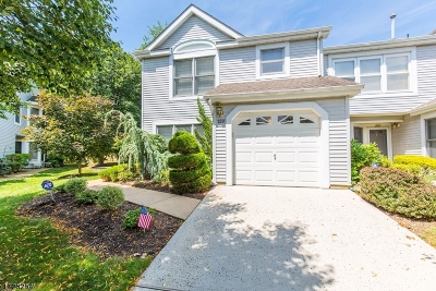 East Brunswick Twp. Condo/Townhouse For Sale: 259 Rooney Ct