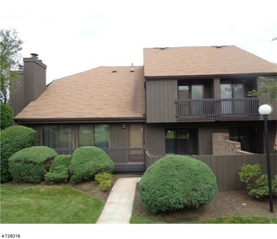 Edison Twp. Condo/Townhouse For Sale: 133 Westgate Dr