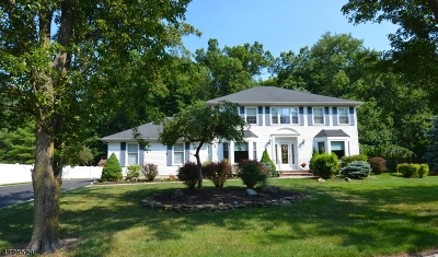 East Hanover Twp. Single Family Home For Sale: 126 Timber Hill Dr