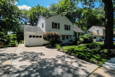 Edison Twp. Single Family Home For Sale: 9 Hill Rd