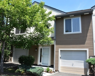 Springfield Twp. Condo/Townhouse For Sale: 955 S Springfield Ave, 1902 #1902