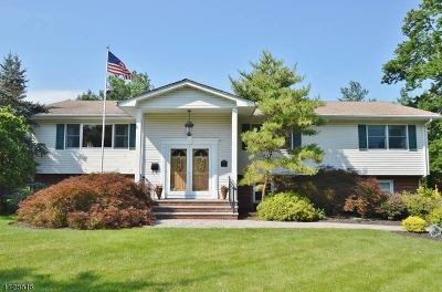 Livingston Twp. Single Family Home For Sale: 2 Dellmead Dr