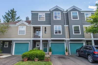 Bridgewater Twp. Condo/Townhouse For Sale: 209 Crestview Rd