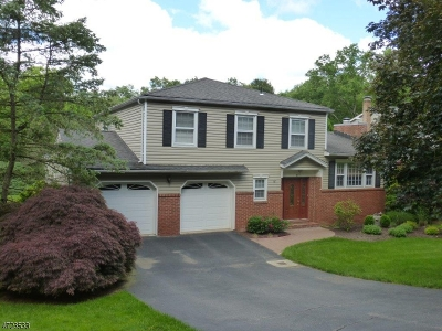 Parsippany-Troy Hills Twp. Single Family Home For Sale: 2 Doremus Drive