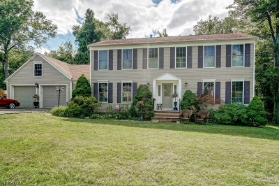 East Hanover Twp. Single Family Home For Sale: 24 Norwood Rd