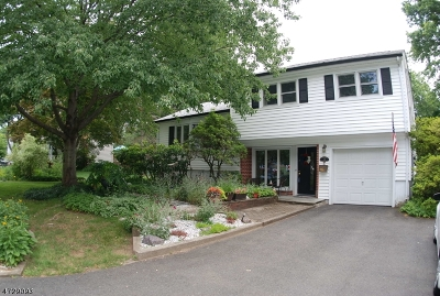 Boonton Town Single Family Home Active Under Contract: 28 Crown Rd