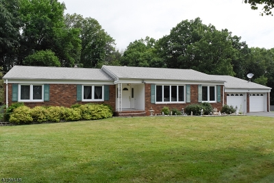Parsippany-Troy Hills Twp. Single Family Home For Sale: 16 Barbara St