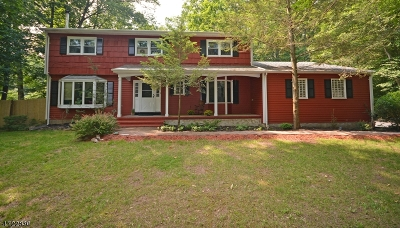 Warren Twp. Single Family Home For Sale: 6 Angus Ln