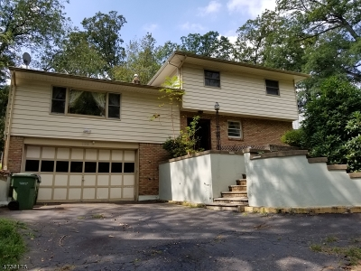 Edison Twp. Single Family Home For Sale: 158 Player Ave