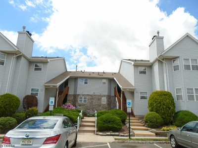 Piscataway Twp. Condo/Townhouse For Sale: 191 Bexley Ln #191