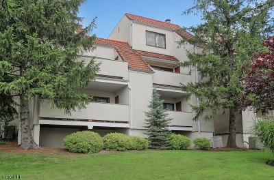 West Orange Twp. Condo/Townhouse For Sale: 24 Cerone Ct