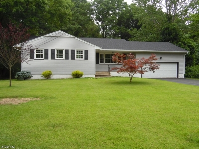 Parsippany Single Family Home For Sale: 31 Sagamore Rd