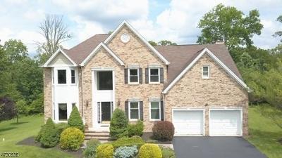 Bridgewater Twp. Single Family Home For Sale: 6 Black Ct